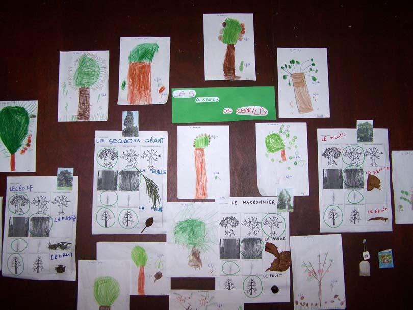 General_arbres.jpg